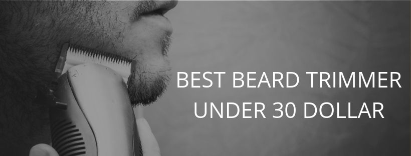 Best Beard Trimmer Under 30 Dollars